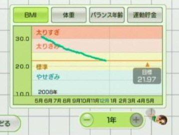 WiiFit2s.jpg