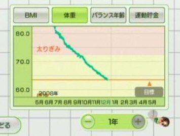 WiiFit3s.jpg